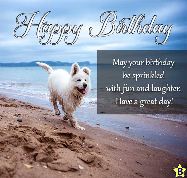 happy birthday images beach dog