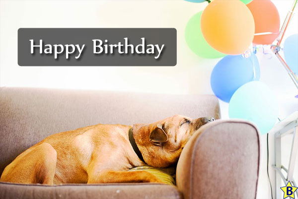 Happy Birthday Dog Images for-him