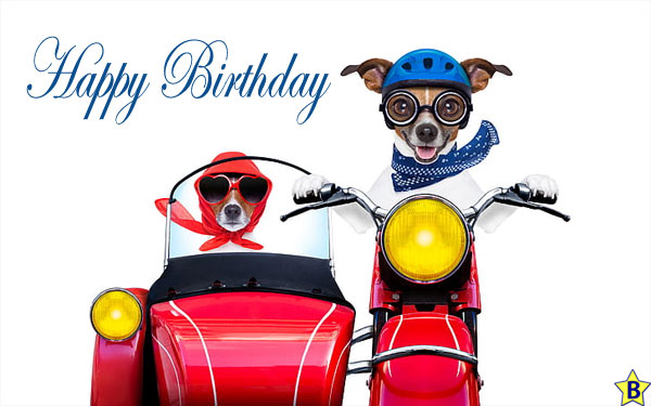 Happy Birthday Dog Images friends forever