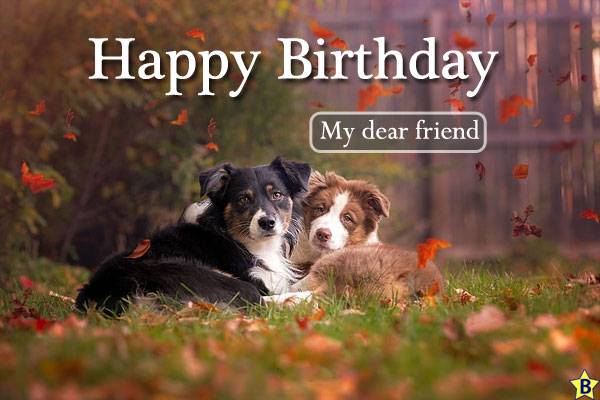 Happy Birthday Dog Images friends