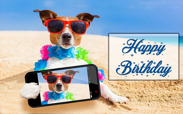 Happy Birthday Dog Images mobile selfie