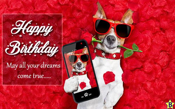 Happy Birthday Dog messages