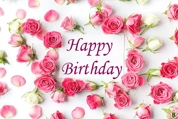 Happy birthday Images Pink rose