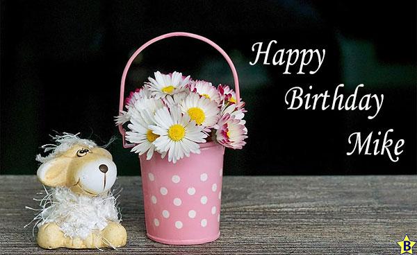 Happy birthday mike teddy bear