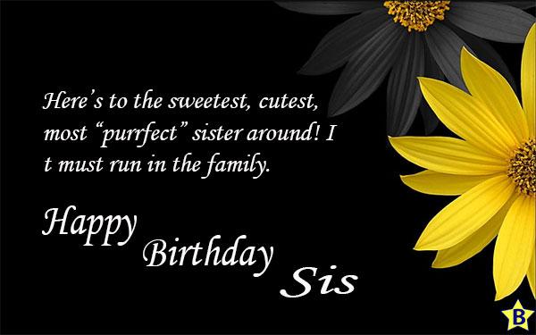 happy birthday sister quotes one line