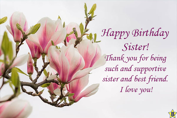 happy birthday sister you are my best friend
